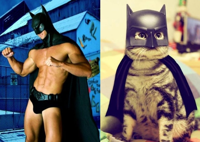 парень и кот в костюме бэтмена