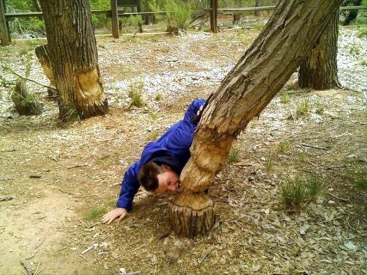 парень грызет дерево