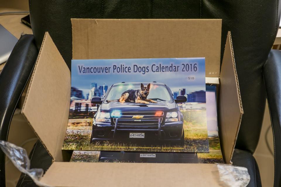 календарь с собакой на машине в коробке