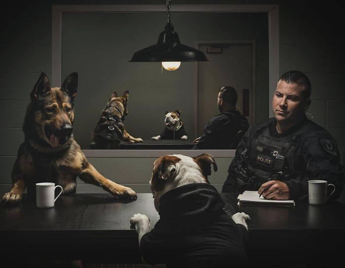 полицейский и овчарка допрашивают собаку