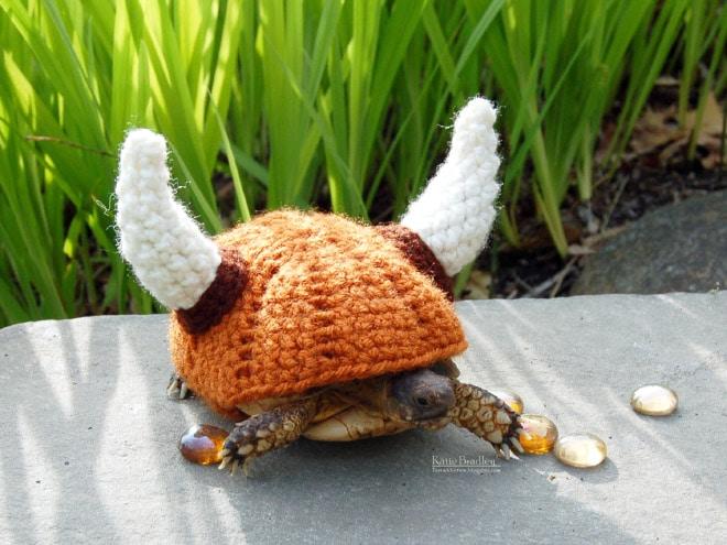 черепаха в костюме викинга