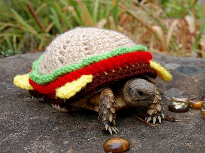 черепаха в костюме