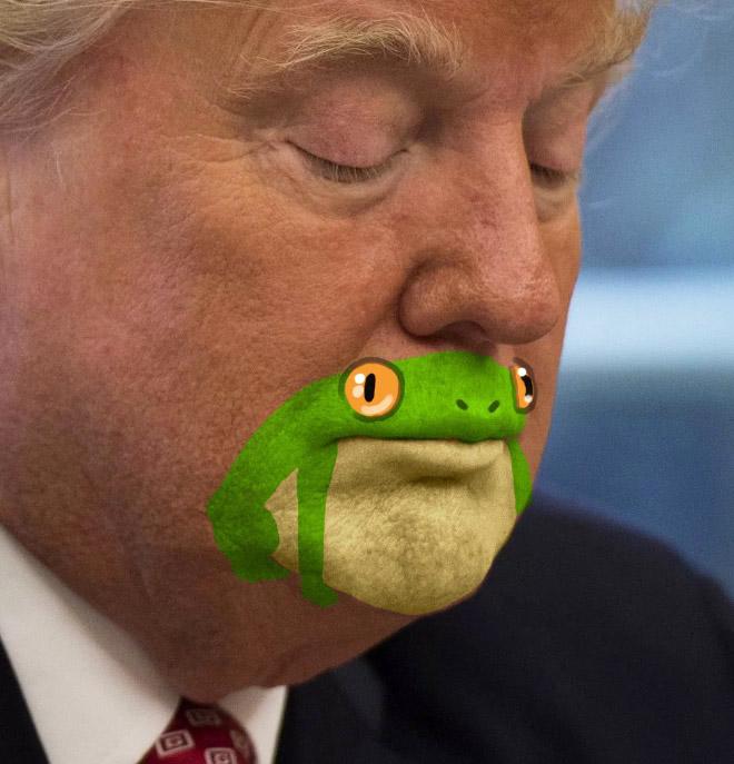 лицо дональда трампа