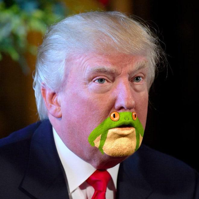 дональд трамп с жабой на подбородке