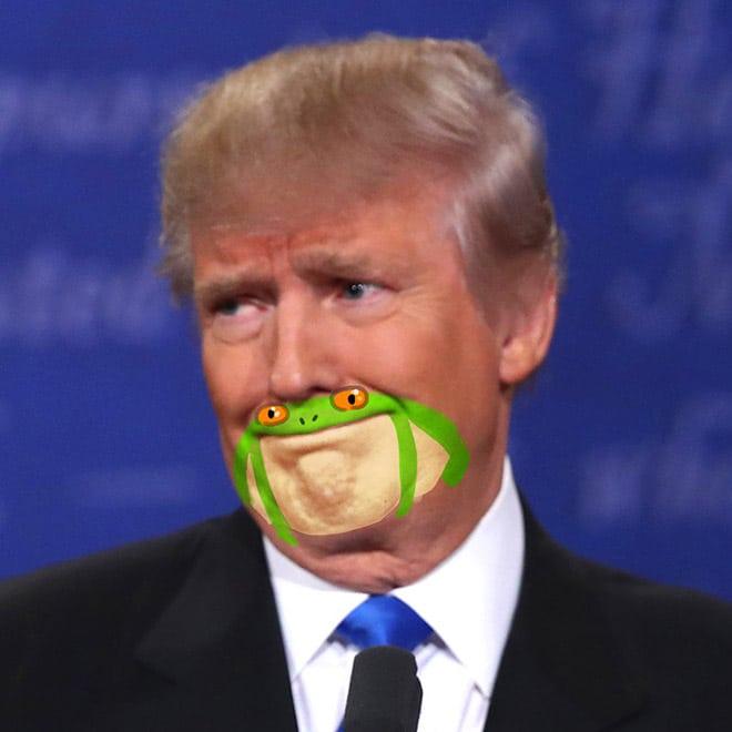 дональд трамп с лягушкой на подбородке