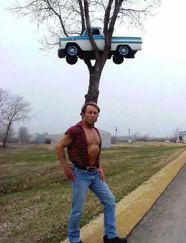 смешной мужчина и авто на дереве