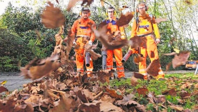 листья убирают мужчины в оранжевым комбинезонах