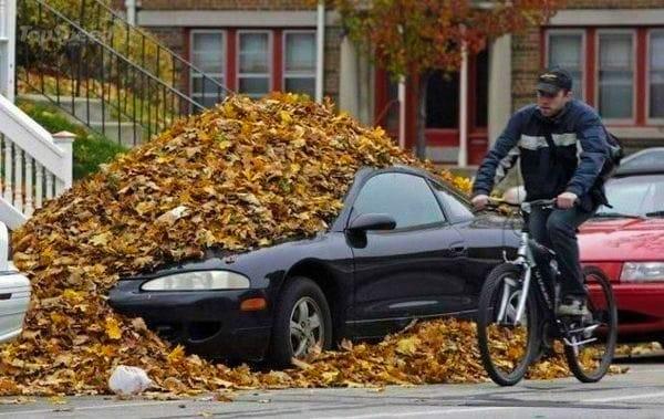 машина засыпана листьями