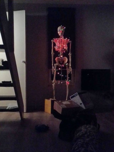 скелет в огоньках