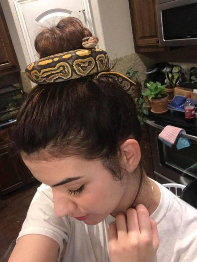 девушка со змеей в волосах