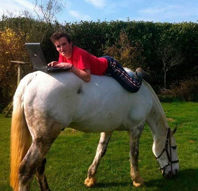 парень с ноутбуком лежит на лошади