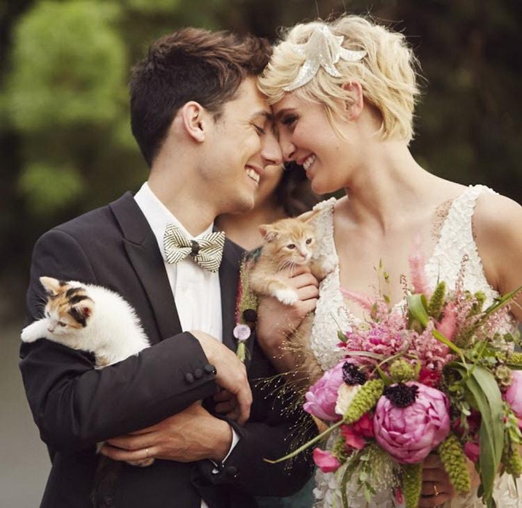 жених невеста обнимают котят