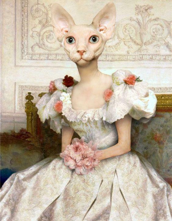 девушка с головой кошки