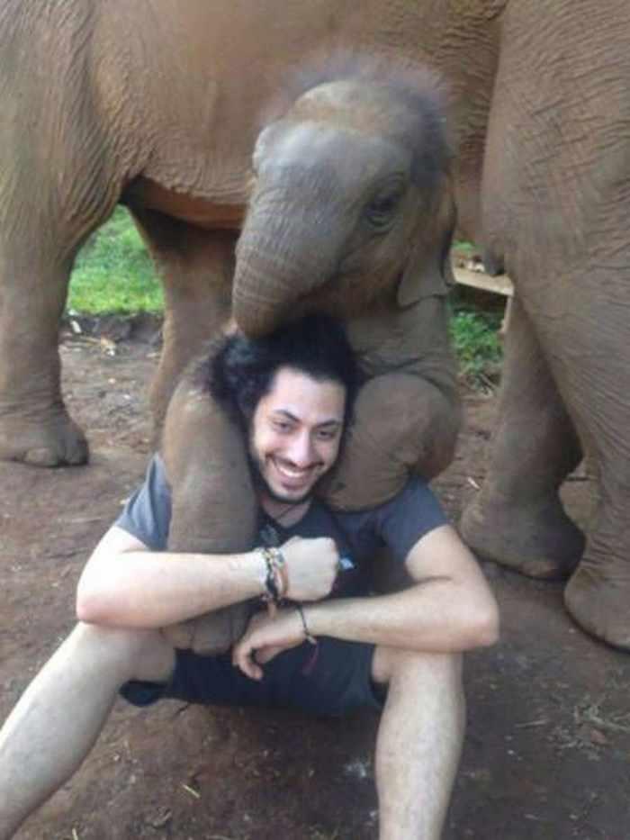 мужчина обнимается со слоном
