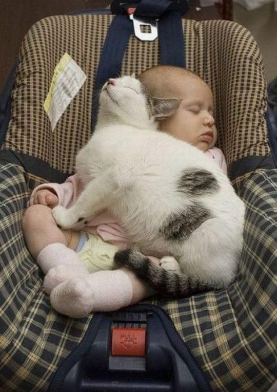 Кот спит с ребенком