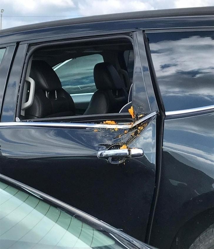 тыква влетела в машину