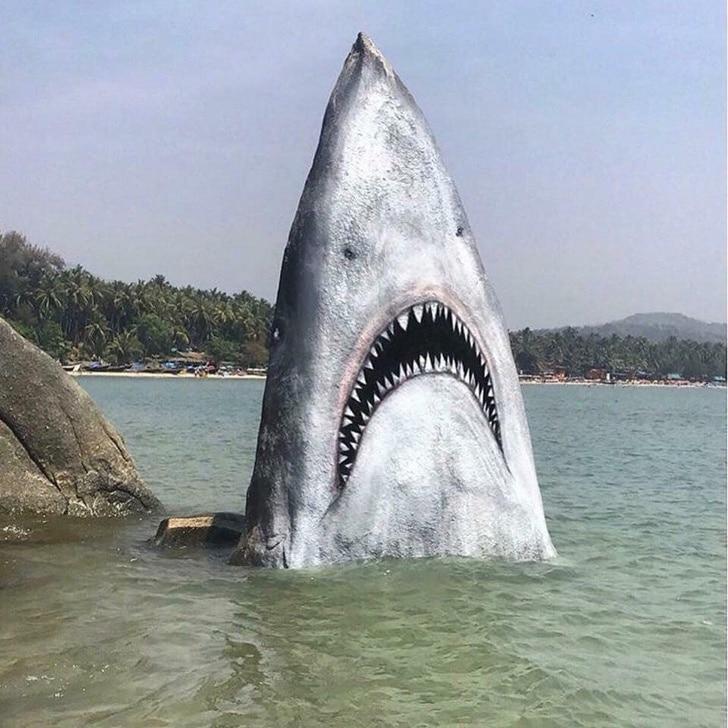 камень акула