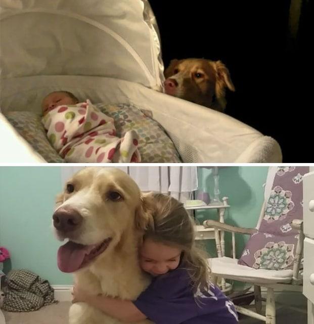 девочка и пес