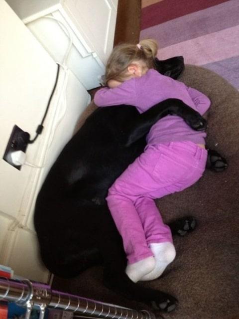 девочка и пес спят в обнимку