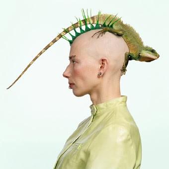 девушка с ирокезом на голове