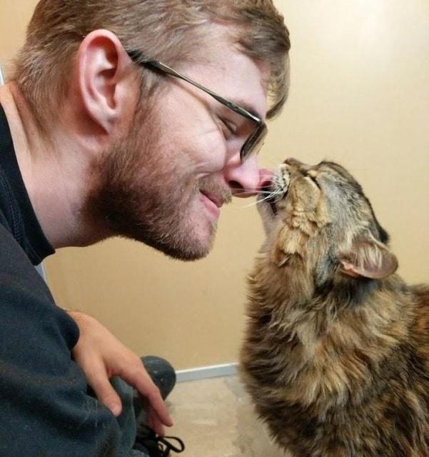 кот лижет нос хозяина