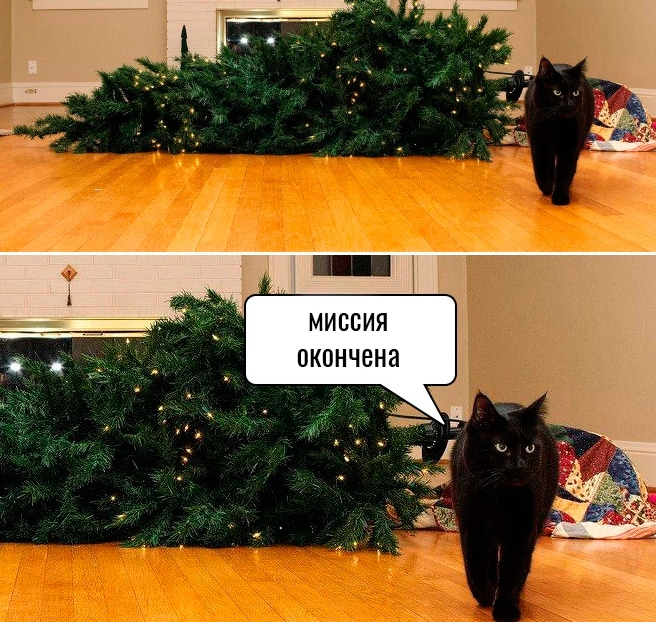 черный кот и перевернутая елка