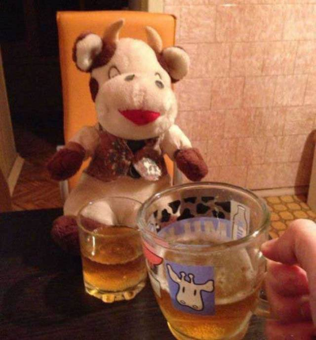 плюшевая корова и пиво