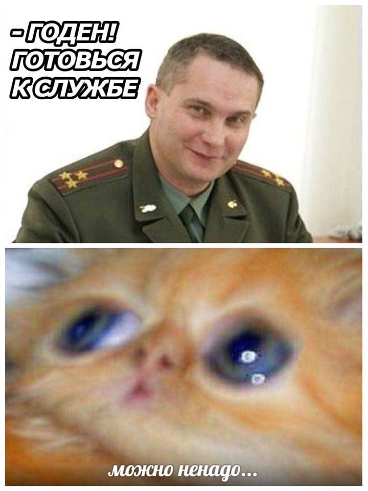 мужчина и рыжий котенок