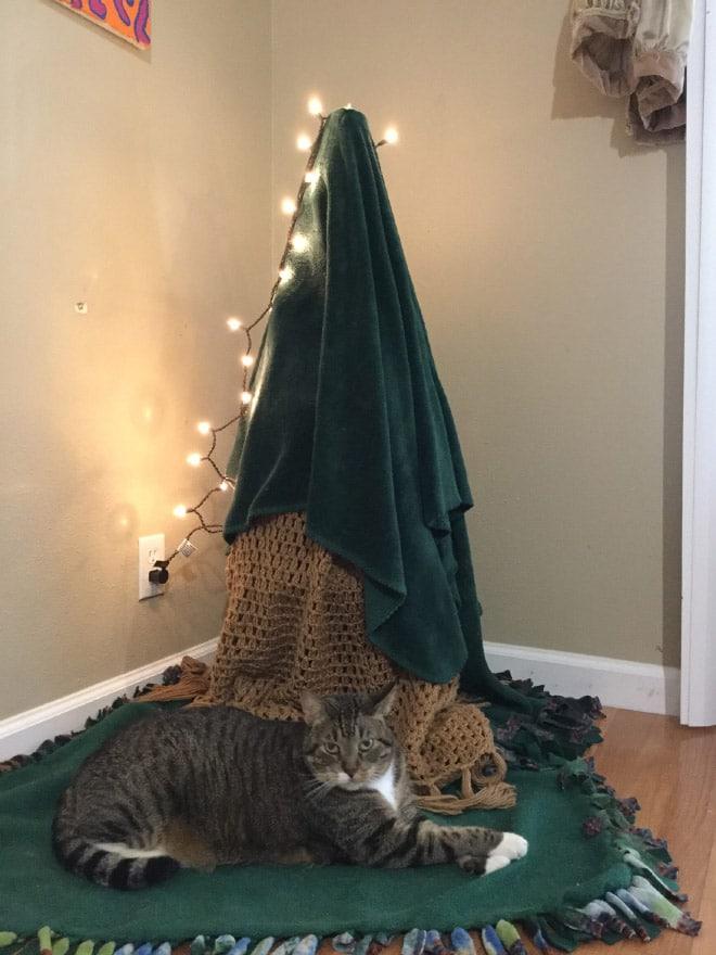 кот рядом с елкой под одеялом