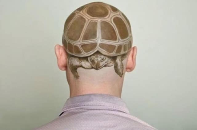 тату черепаха на голове