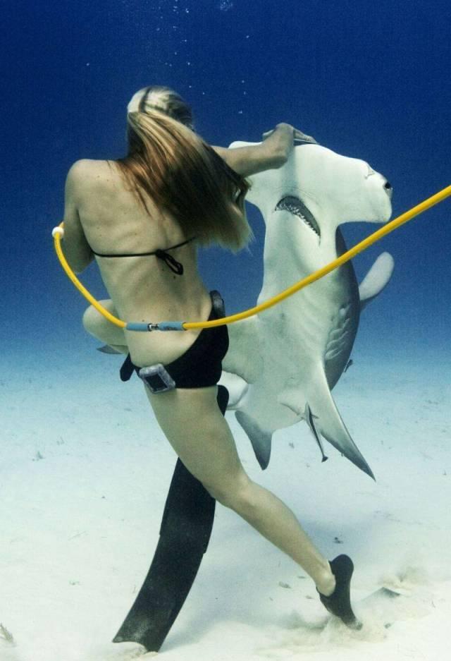 девушка плавает с акулой