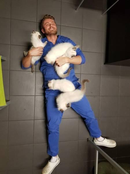 мужчина и котята