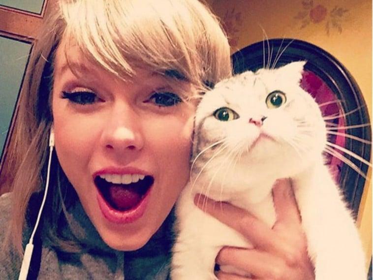 тейлор свифт с котом