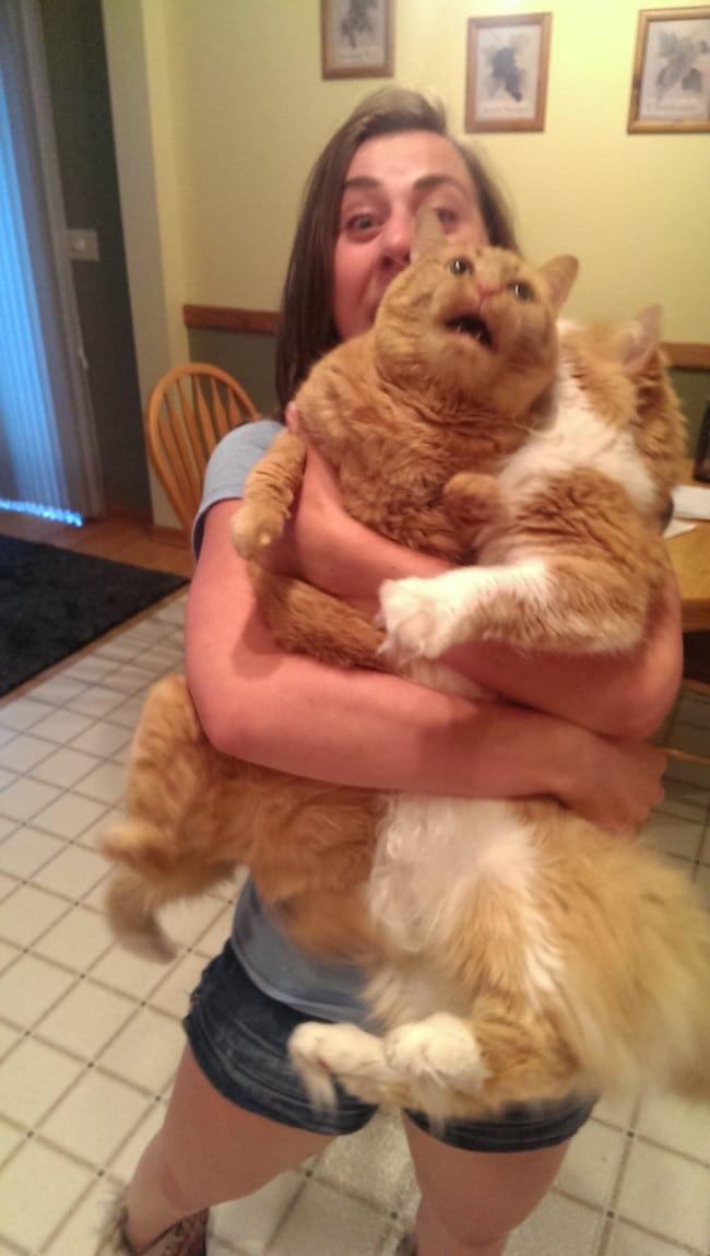 женщина держит на руках двух котов