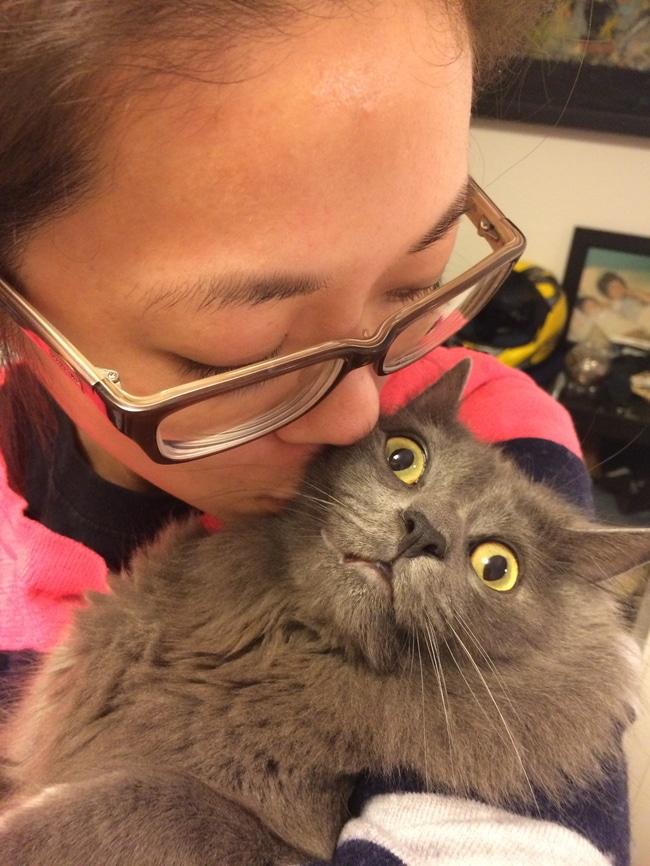 женщина в очках целует серого кота