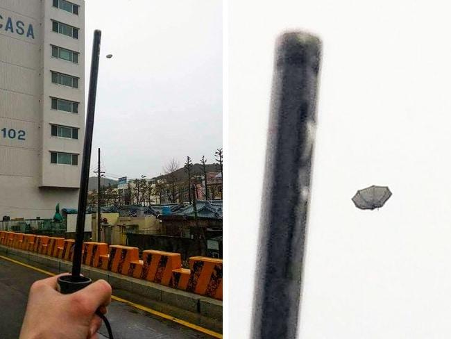 зонт улетел