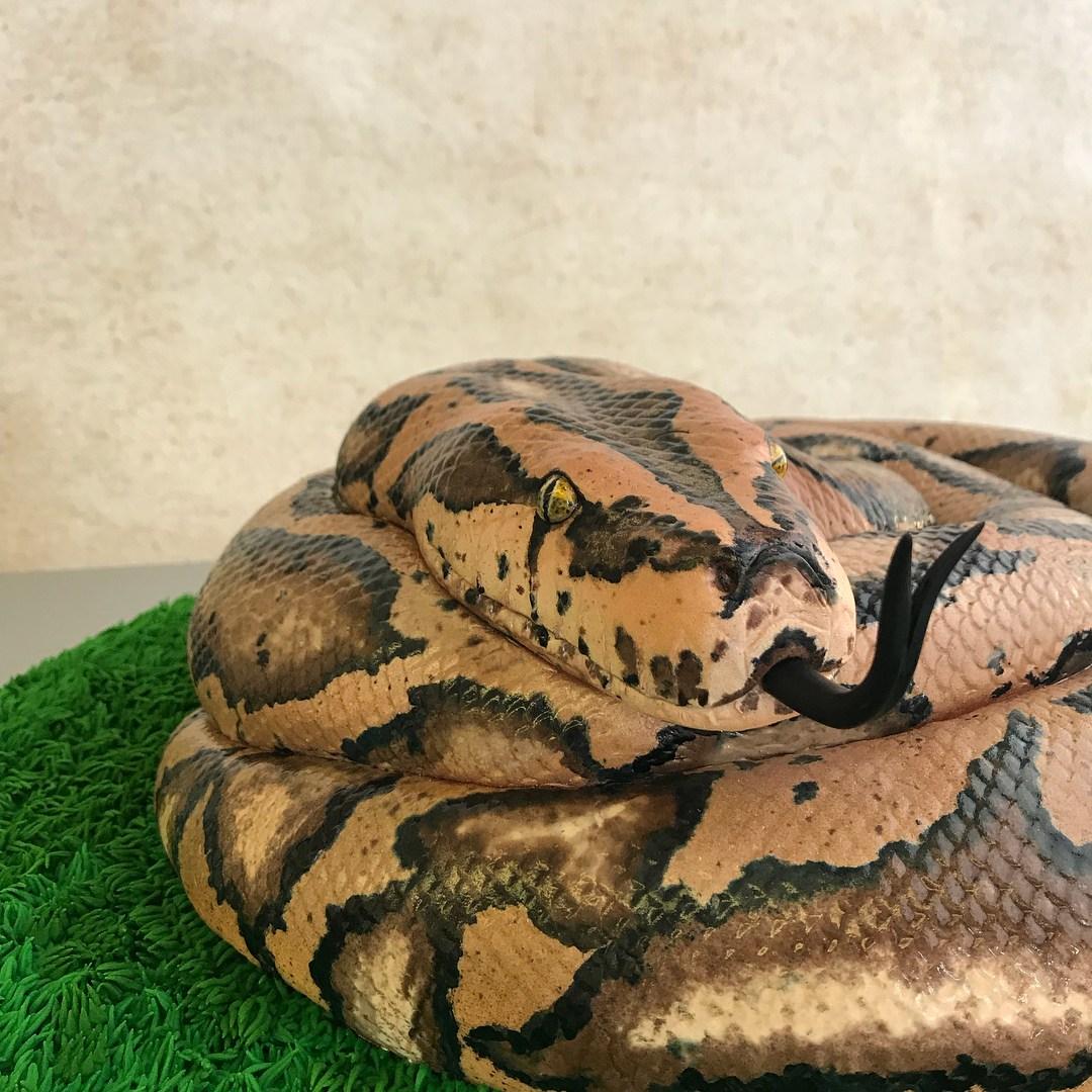 торт в виде змеи