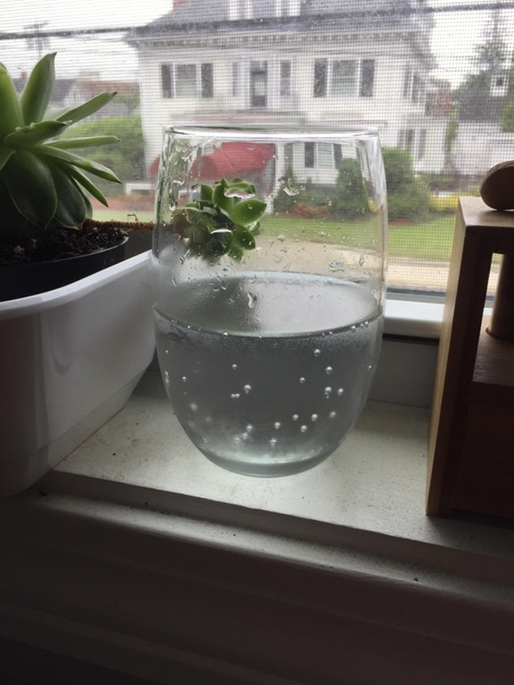левитирующая ваза