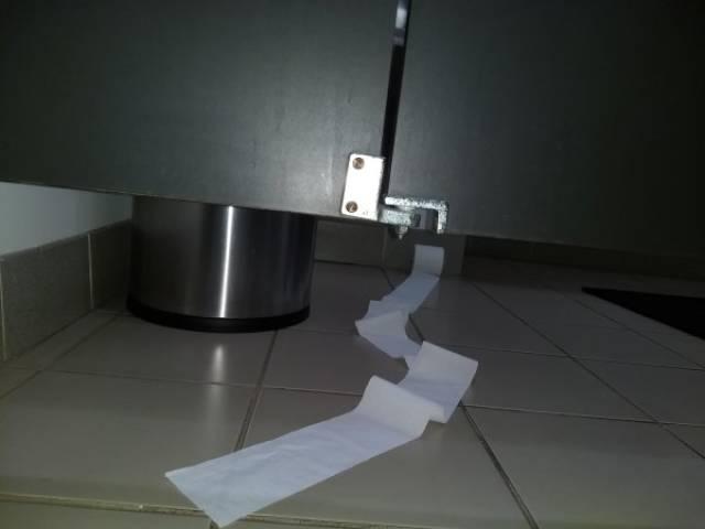 туалетная бумага на полу