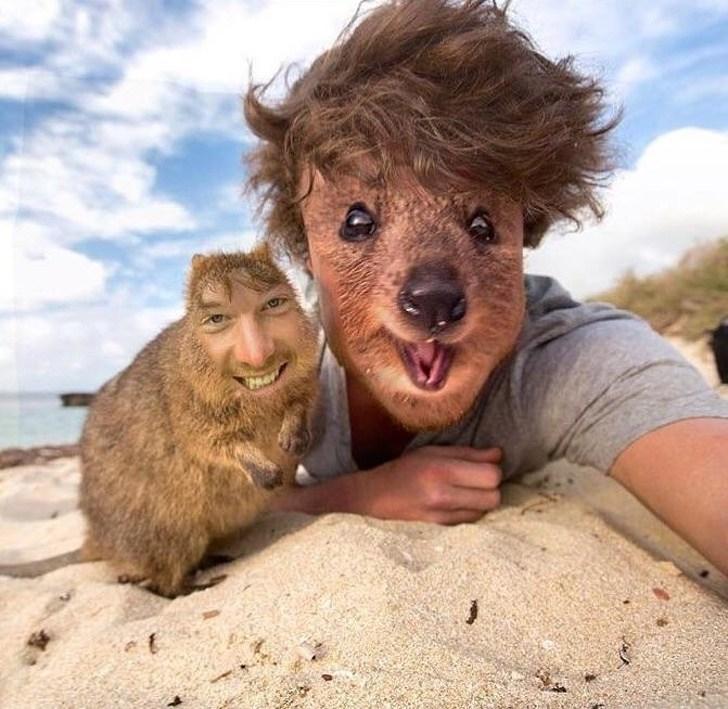 парень с животным на пляже