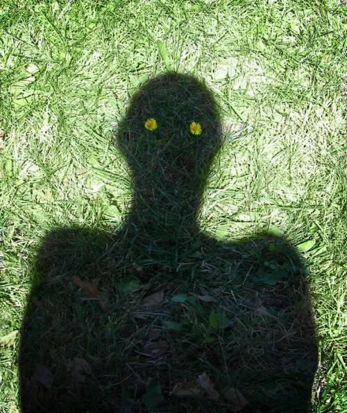 тень человека на траве