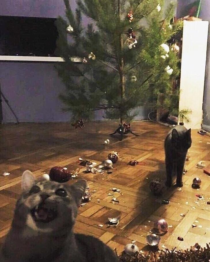 коты и елки рис 2