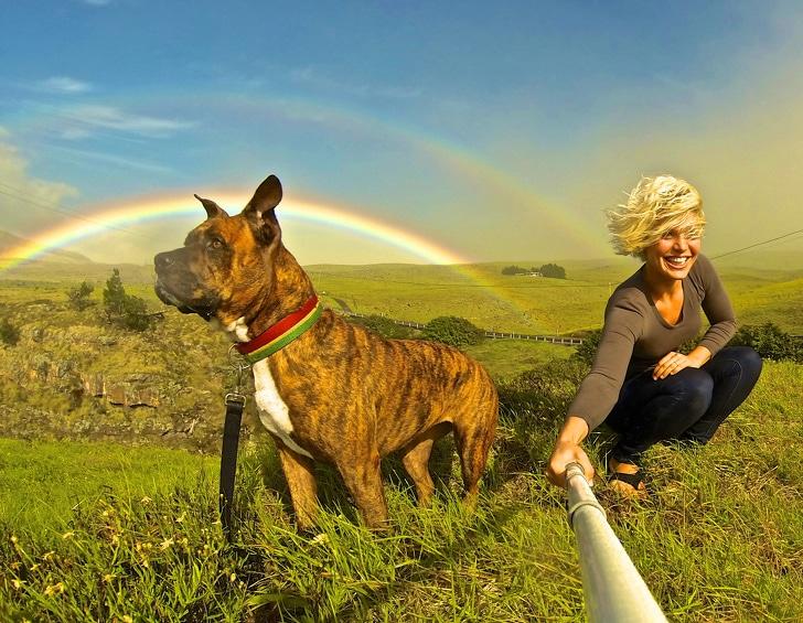 селфи девушки с боксером на фоне радуги