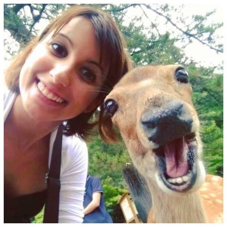 девушка с животным