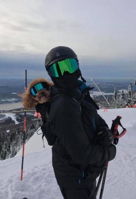 человек и его собака в горах