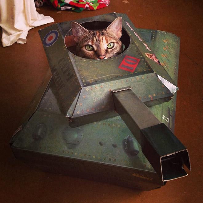полосатый кот сидит в игрушечном танке