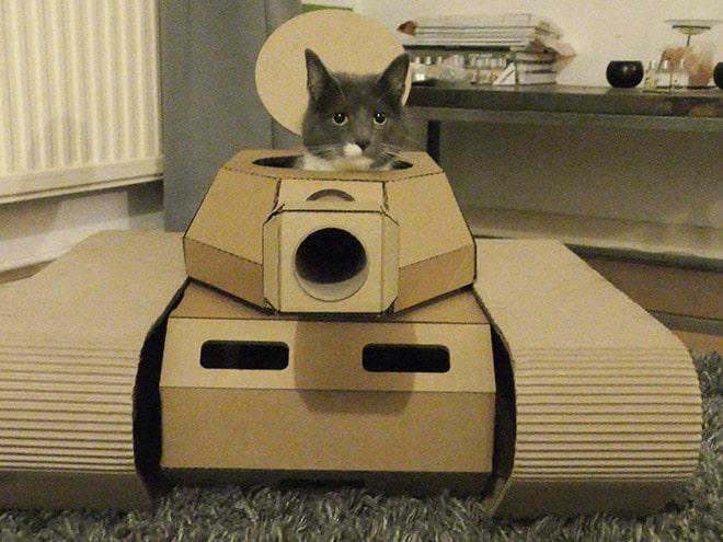 серый кот сидит в картонном танке