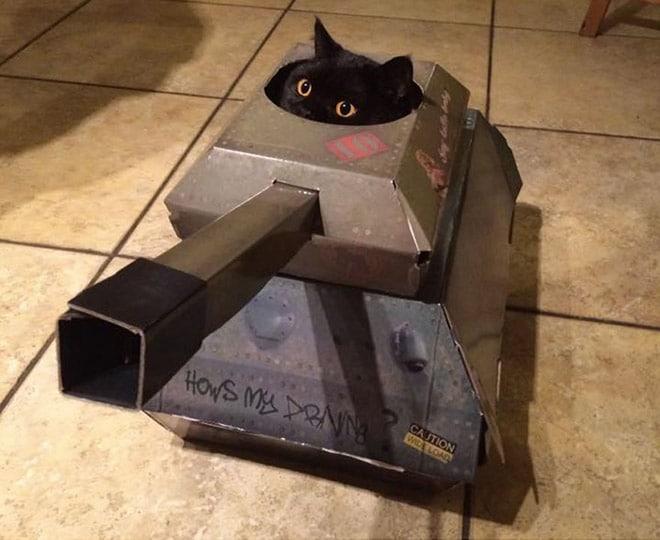 черная кошка в танке