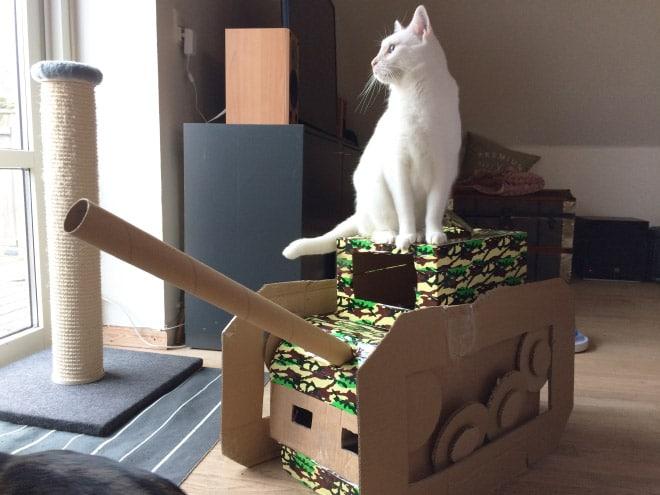 белый кот сидит на танке