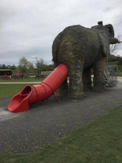 слон и горка